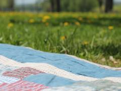 picnic-1112398_1920