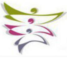 logo AFEP